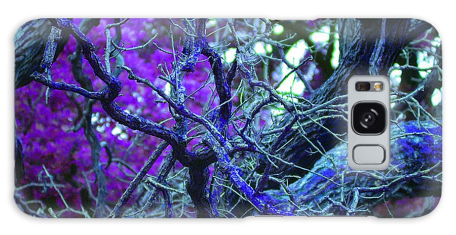 First Star Art By Jrr Galaxy S8 Case featuring the photograph Enchanted Forest by First Star Art