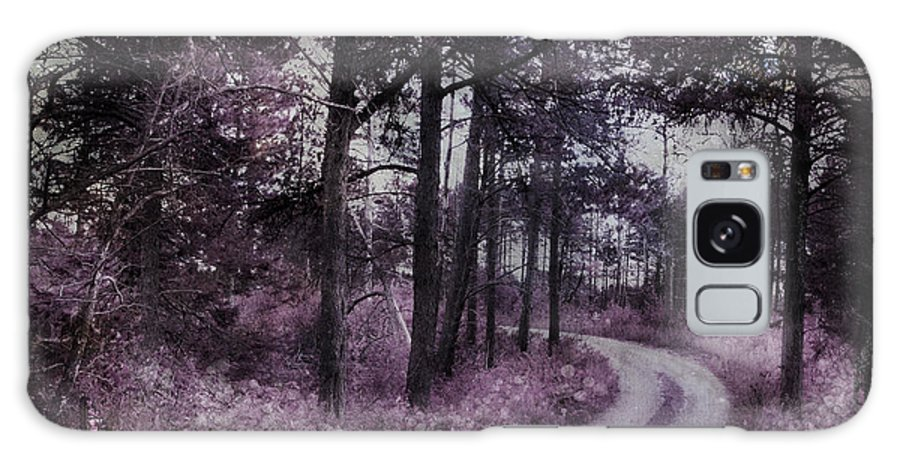 Evie Galaxy S8 Case featuring the photograph Enchanted Seney Path by Evie Carrier