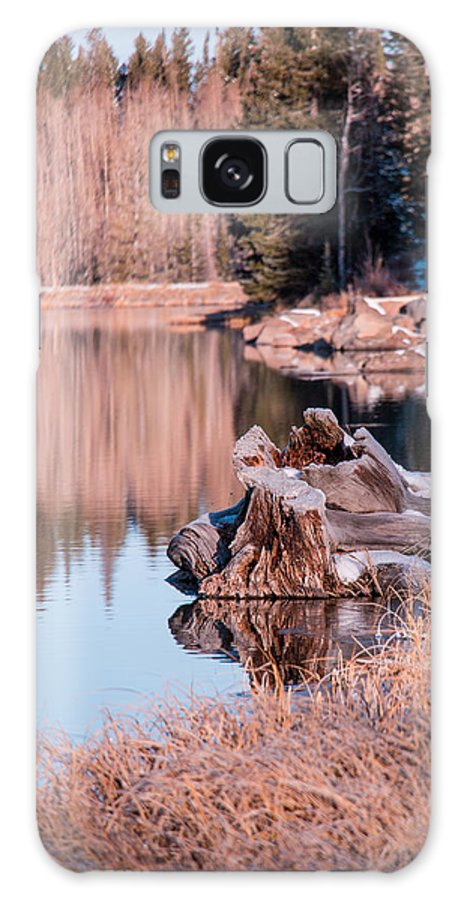 Early Winter Galaxy S8 Case featuring the photograph End Of Fall by Gwyn Hittle