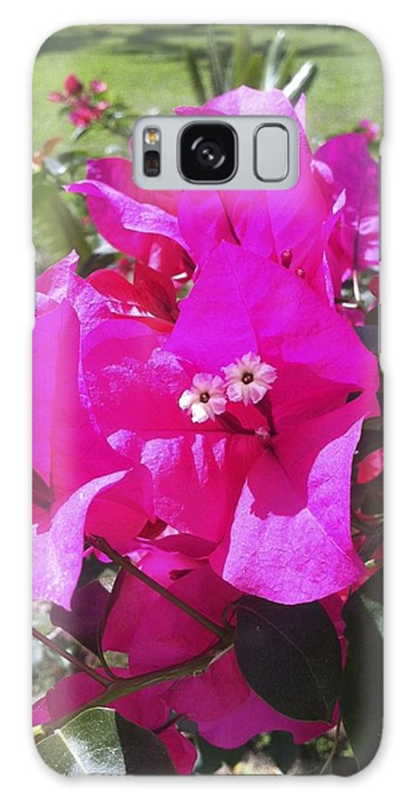 Flower Galaxy S8 Case featuring the photograph Endless Summer Color by William Hallett
