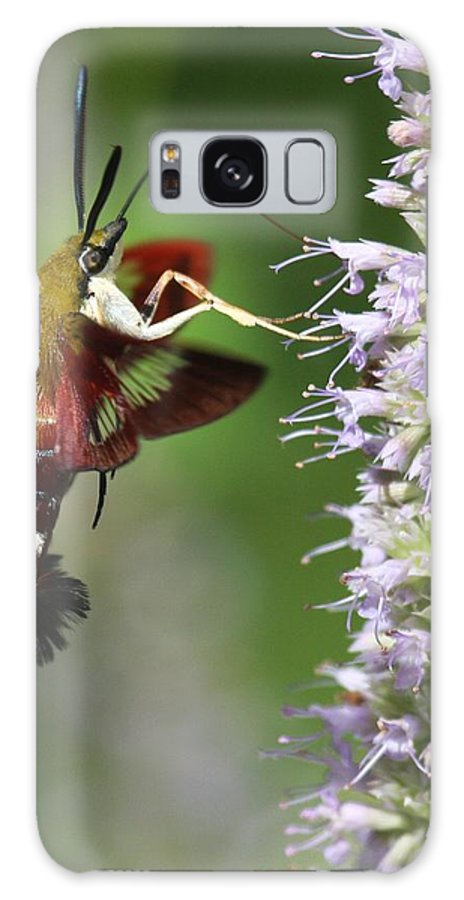 Moths Galaxy S8 Case featuring the photograph Enjoying The Flowers by Myrna Bradshaw