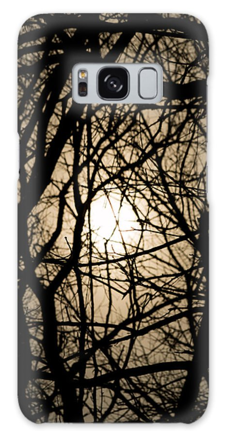 Entangles Galaxy S8 Case featuring the photograph Entangled by Gaurav Singh