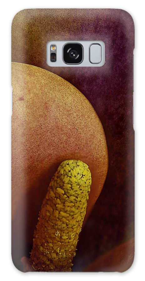 Sex Galaxy S8 Case featuring the photograph Erotica by Bruce Bain