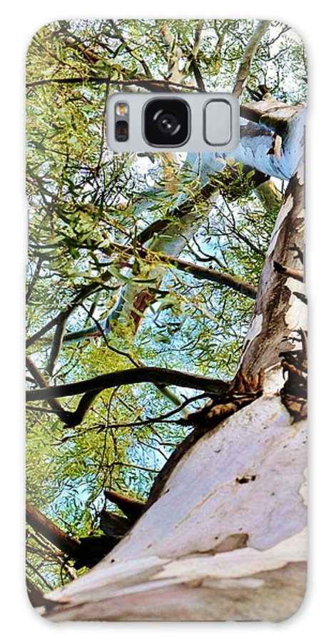 Eucalyptus Tree; Branch; Close Up; Old; Tree; Green; Bark; Garden; Leafs; Background; Wind; Decorative; Detail; View; Weather; Galaxy S8 Case featuring the photograph Eucalyptus Tree Branch by Werner Lehmann