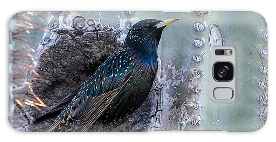 European Starling Galaxy S8 Case featuring the photograph European Starling by Tam Ryan