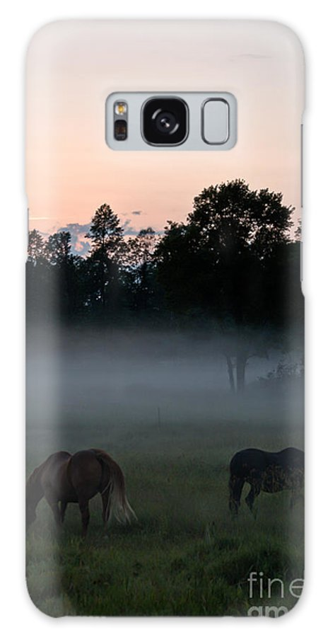 Landscape Galaxy S8 Case featuring the photograph Evening Mist by Cheryl Baxter