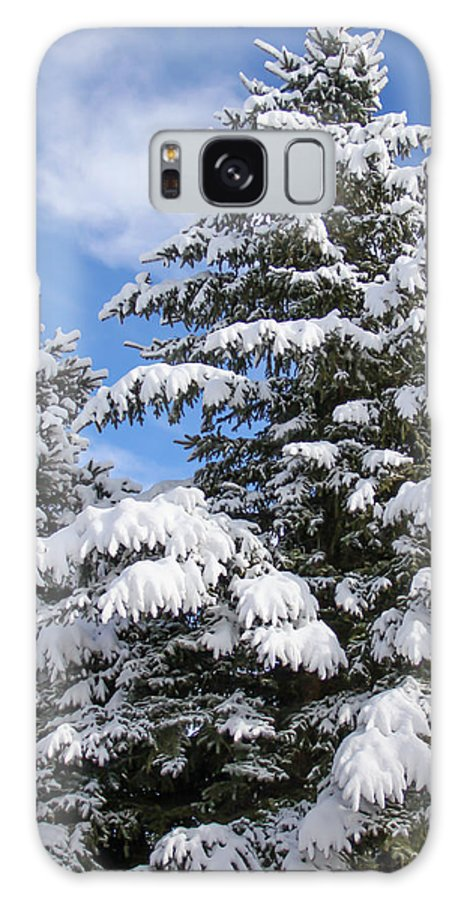 Tree Galaxy S8 Case featuring the photograph Evergreen Snow by J Havnen