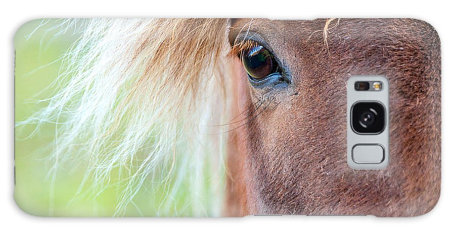 Europe Galaxy S8 Case featuring the photograph Eye Of A Pony by Alexey Stiop