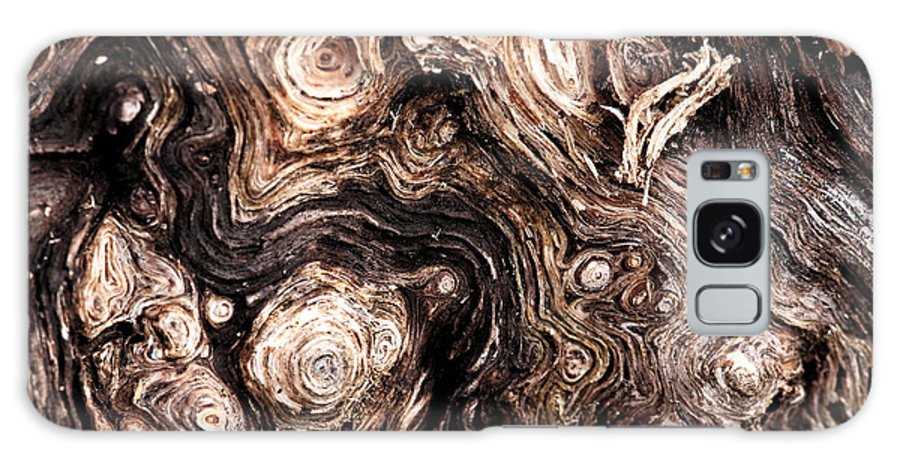 Eyes Of A Tree Galaxy S8 Case featuring the photograph Eyes Of A Tree by John Rizzuto