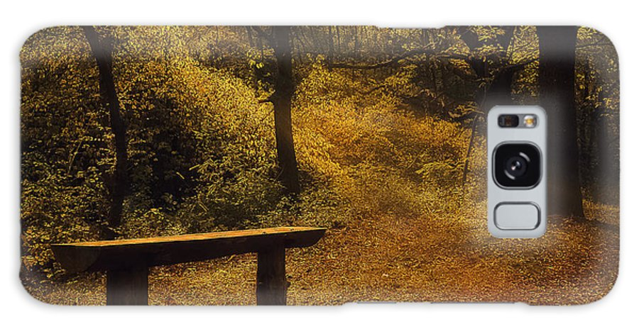 Fairy Autumn Light Galaxy S8 Case featuring the photograph Fairy Autumn Light by Iliyana Lazarova