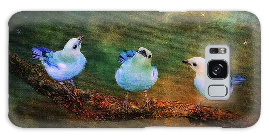 Bird Galaxy Case featuring the photograph Faith Hope And Charity by Lois Bryan