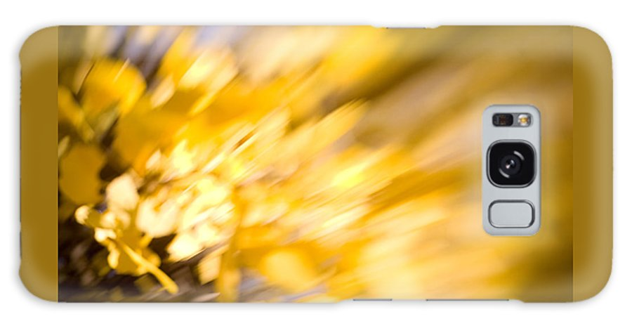 Color Galaxy S8 Case featuring the photograph Fall Colors 6730 by Timothy Bischoff
