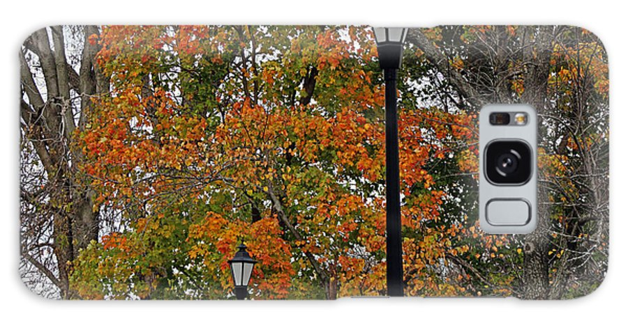 Tree Galaxy S8 Case featuring the photograph Fall Colors by Carolyn Ricks