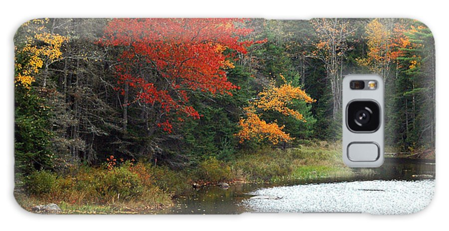 Fall Colors Galaxy S8 Case featuring the photograph Fall Colors On A Lake by Robert Suggs