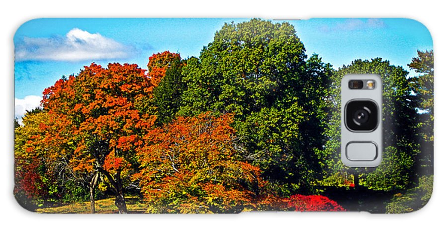 Fall Galaxy S8 Case featuring the photograph Fall Colours In Massachusetts by Charlene Gauld