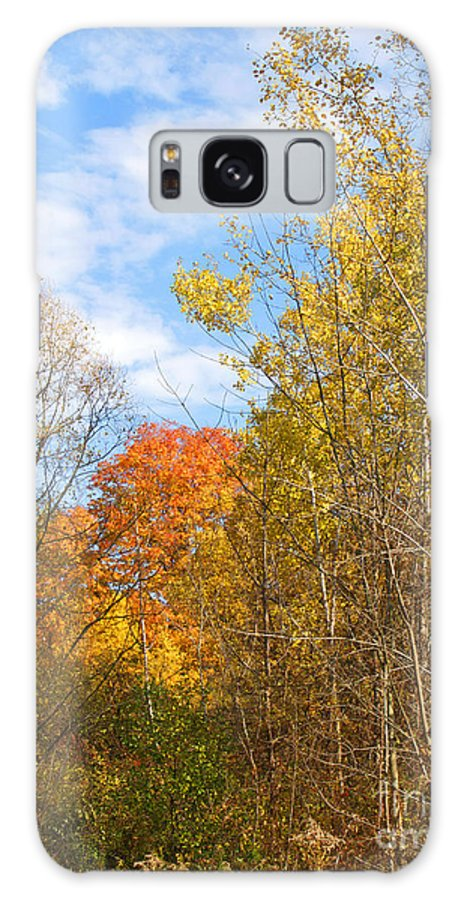 Fall Galaxy S8 Case featuring the photograph Fall Forest by Ann Horn