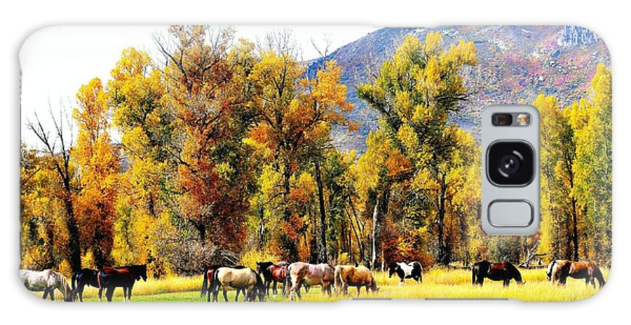 Marabou Galaxy S8 Case featuring the photograph Fall Grazing by Gerald Blaine