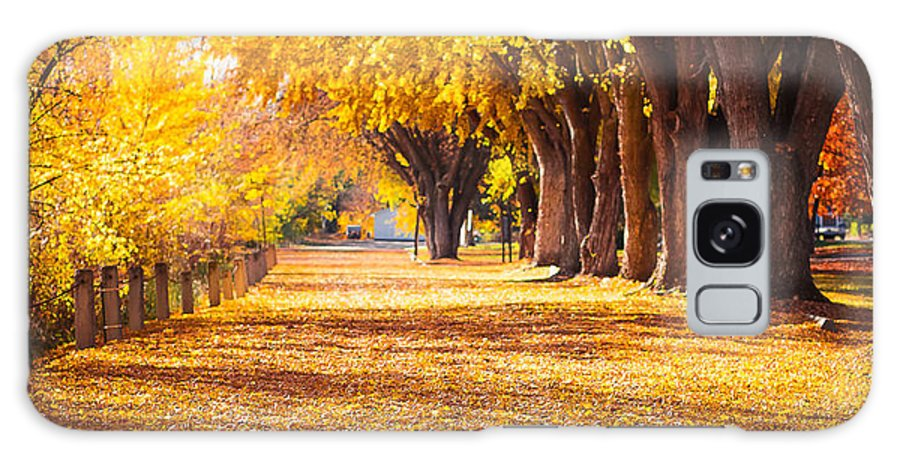 Fall Colors Galaxy S8 Case featuring the photograph Fall In Okanogan Legion Park by Caroline Henry