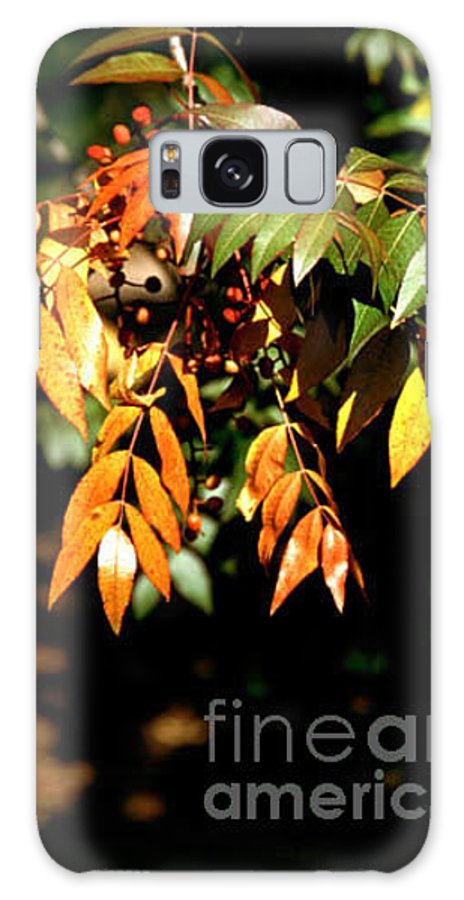 Fall Color Galaxy S8 Case featuring the photograph Fall Leaves by Kathy McClure