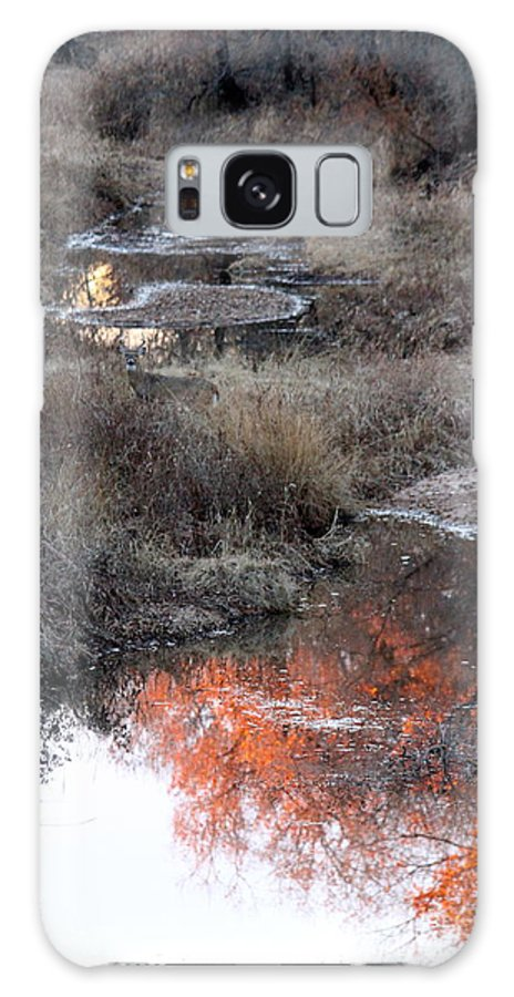 Creek Galaxy S8 Case featuring the photograph Fall Reflections by Krista Wimmer