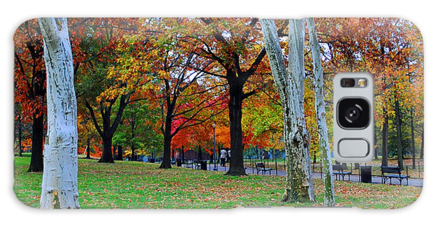 Fall Galaxy S8 Case featuring the photograph Fall Walk by Jost Houk