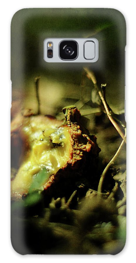Asimina Triloba Galaxy S8 Case featuring the photograph Fallen Fruit by Rebecca Sherman