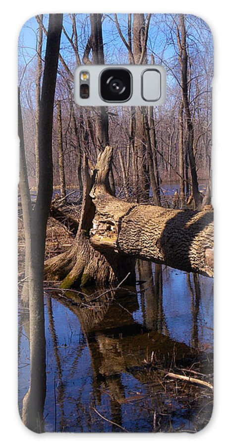 Log Galaxy S8 Case featuring the photograph Fallen In Silence by Linda Waidelich
