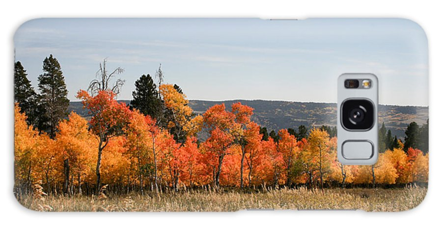 Horizontal Galaxy S8 Case featuring the photograph Fall's Splendor - Casper Mountain - Casper Wyoming by Diane Mintle