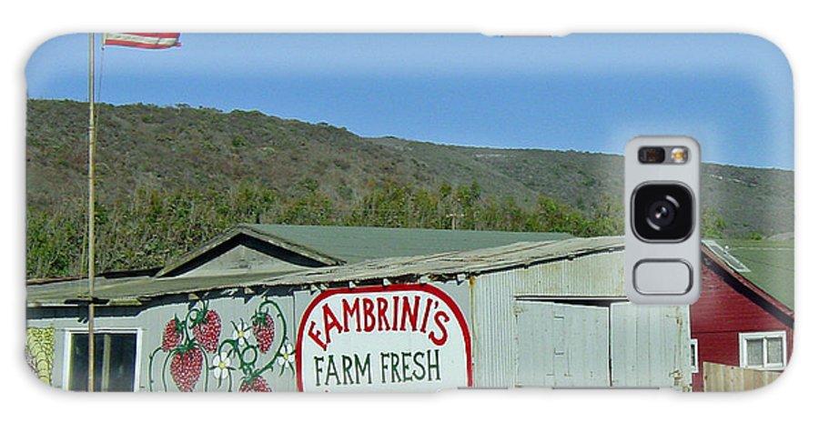 Farm Fresh Produce Galaxy S8 Case featuring the photograph Fambrini's Farm Fresh Produce by Suzanne Gaff