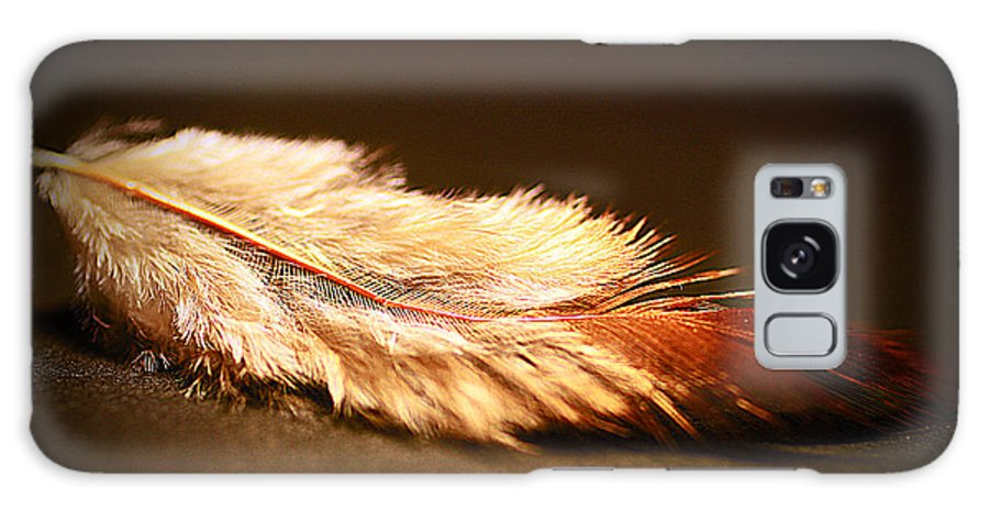 Feather Galaxy S8 Case featuring the photograph Feather by Anne Costello