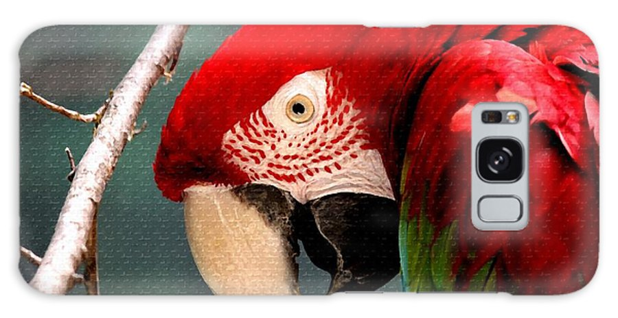 Art Galaxy S8 Case featuring the painting Feathered Friend by Gert J Rheeders