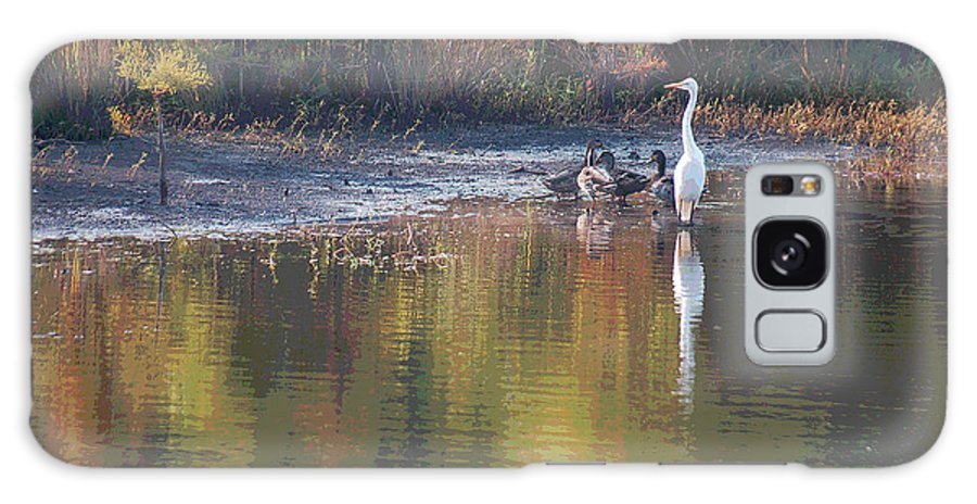 Egret Galaxy S8 Case featuring the photograph Feathered Friends by Suzanne Gaff