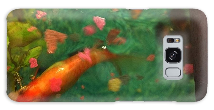 Fish Galaxy S8 Case featuring the photograph Feeding Time by Anna Louise Middleton