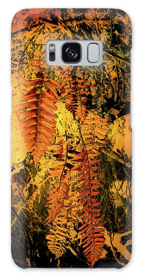 Ferns Galaxy S8 Case featuring the photograph Ferns In Fall by Nina Fosdick