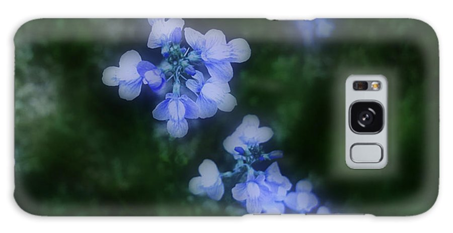 Flower Galaxy S8 Case featuring the photograph Field In Blue by Jaime Crosas