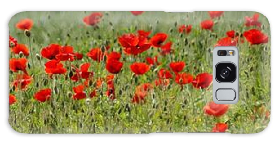 Poppies Galaxy S8 Case featuring the photograph Field Of Poppies by Carol Lynch