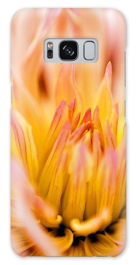 Flower Galaxy S8 Case featuring the photograph Fiery Dahlia by Marilyn Hunt