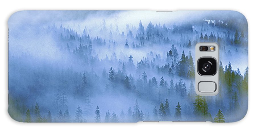 North America Galaxy S8 Case featuring the photograph Fir Trees Shrouded In Fog In Yosemite Valley by Dave Welling