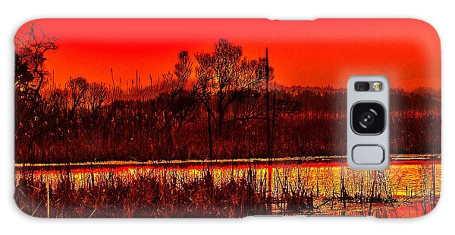 Sunrise Galaxy S8 Case featuring the photograph Firey Dawn Over The Marsh by Nick Zelinsky