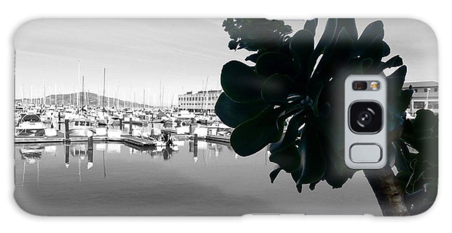 San. Francisco Galaxy S8 Case featuring the photograph Fisherman's Wharf by Fabien White