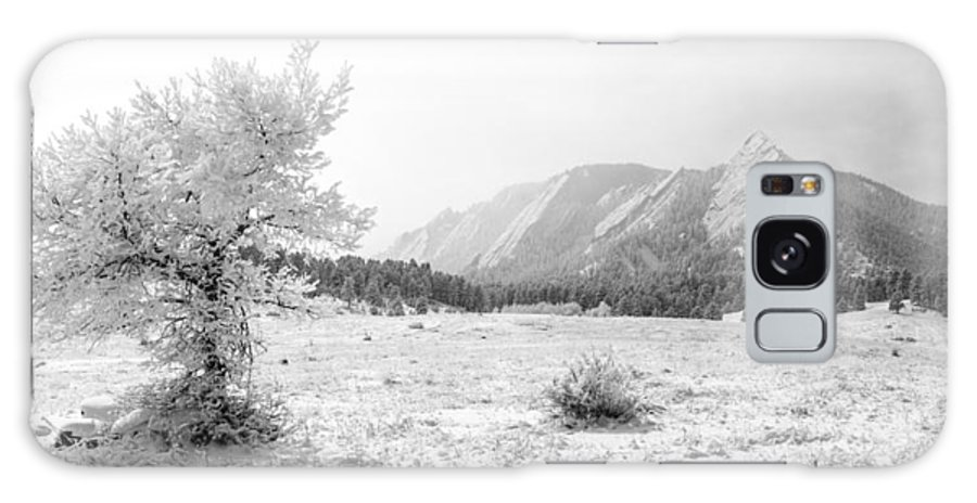 Boulder Galaxy S8 Case featuring the photograph Flatirons Tree - Winter by Aaron Spong