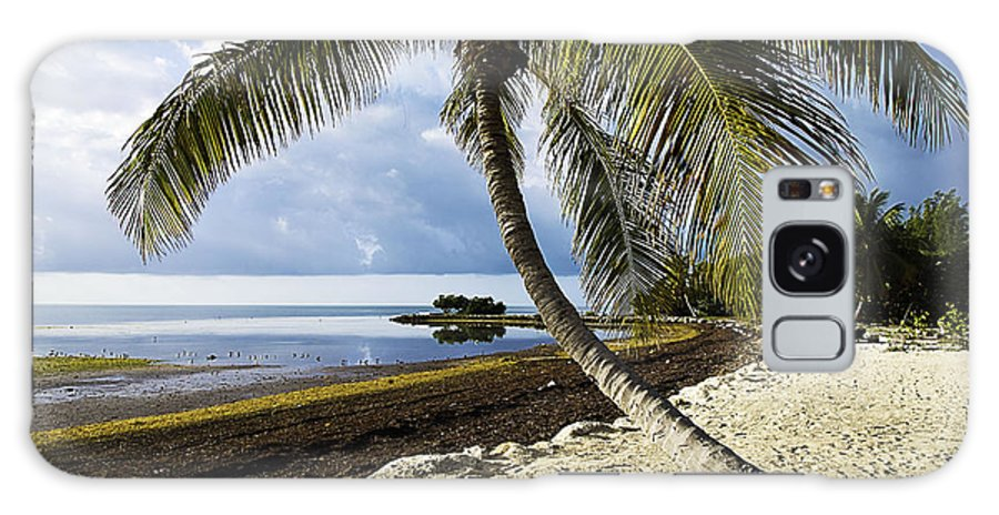 Florida Galaxy S8 Case featuring the photograph Florida Keys Beach by Bruce Bain