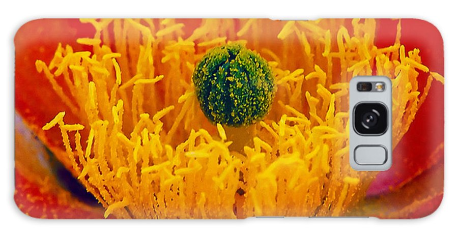 Abundance Galaxy S8 Case featuring the photograph Flower 108 by Ingrid Smith-Johnsen