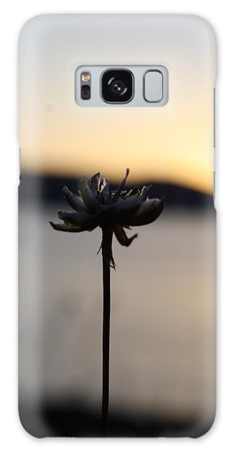 Flower Galaxy S8 Case featuring the photograph Flower by Evy-Ann Tonning