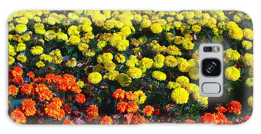 Flowerbed Galaxy S8 Case featuring the photograph Flowerbed Of Narcissuses by Eduard Isakov