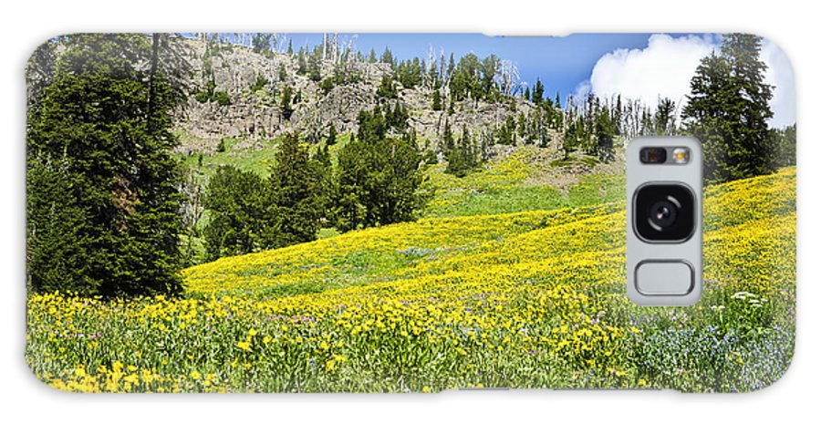 Yellowstone National Park Galaxy S8 Case featuring the photograph Flowers In The Park by Jon Berghoff