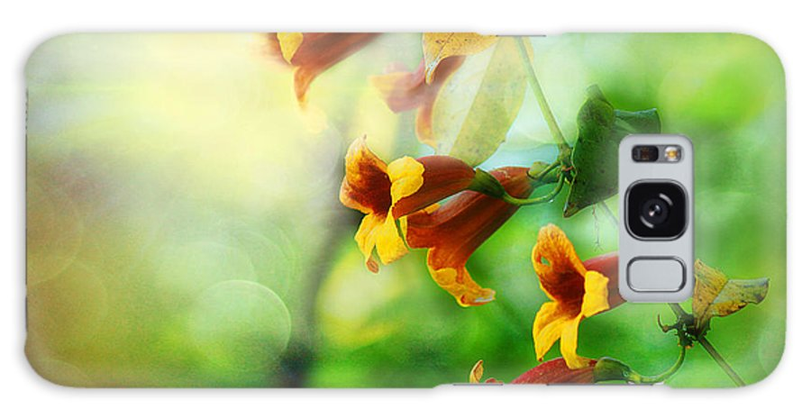 Cross Vine Galaxy S8 Case featuring the photograph Flowers On The Vine by Michael Eingle
