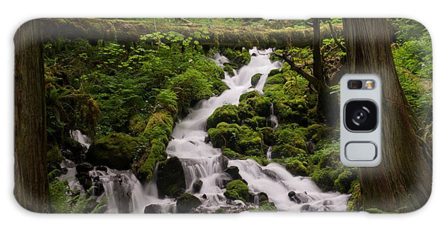 Waterfalls Galaxy S8 Case featuring the photograph Flowing Stream In Spring by Jackie Follett