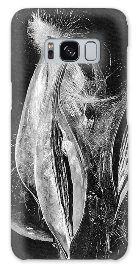 Seed Pods Galaxy S8 Case featuring the photograph Fly Away Seeds by Phyllis Denton