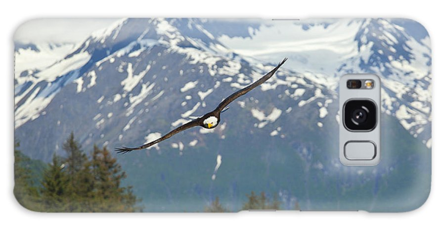 Adult Galaxy S8 Case featuring the photograph Flying Amongst The Mountains by Tim Grams